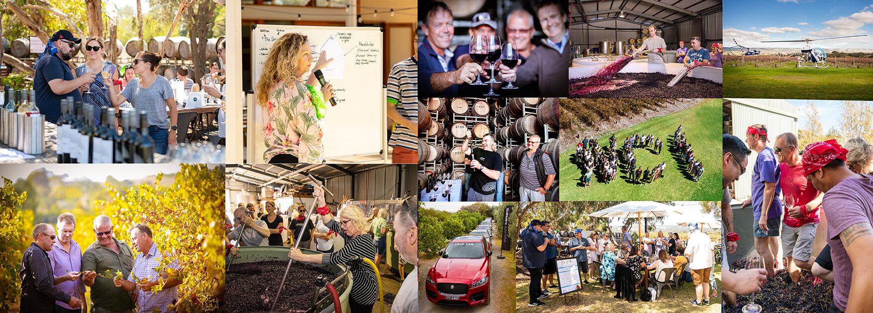 Corporate Event Venue McLaren Vale - Ekhidna Wines